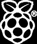 Raspberry Pi servers